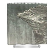 Ice Flow 16 Shower Curtain