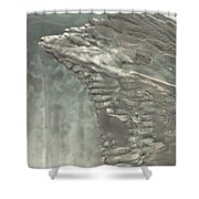 Ice Flow 17 Shower Curtain