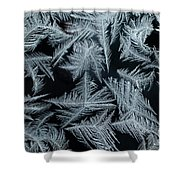 Ice-flowers Frost Pattern Tracery On Frost Window Shower Curtain