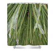 Ice Formation Shower Curtain
