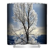 Ice Glow Shower Curtain
