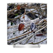 Ice Incased Leaves Shower Curtain