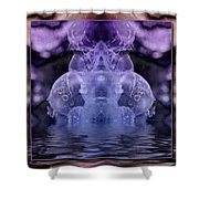 Ice King Shower Curtain