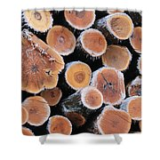 Ice Logs Shower Curtain