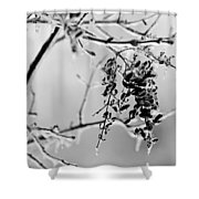 Ice Melting Shower Curtain