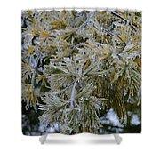 Ice Needles Shower Curtain