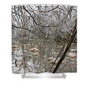 Ice Pond Shower Curtain