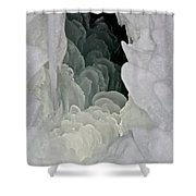 Ice Scales Shower Curtain