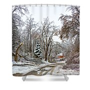 Ice Storm...day 6 Shower Curtain