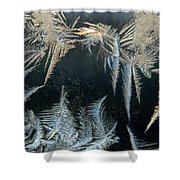 Ice Wings Shower Curtain