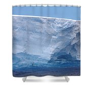 Iceberg With Cape Petrel Shower Curtain