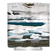 Icebergs In August Glacier International Peace Park Shower Curtain