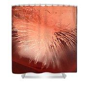 Iced Cherry Juice Shower Curtain