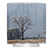 Iced Tree Shower Curtain