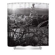 Icerise Shower Curtain