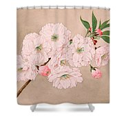Ichi-yo - Single Leaf - Vintage Japan Watercolor Shower Curtain