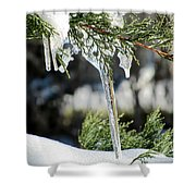 Icicles On Juniper Branch Shower Curtain