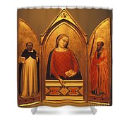 Icon Case Shower Curtain