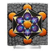 Icosahedron In A Metatron's Cube Shower Curtain