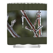 Icy Branch-7463 Shower Curtain