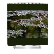 Icy Branch-7482 Shower Curtain