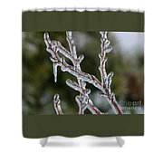 Icy Branch-7485 Shower Curtain
