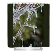 Icy Branch-7506 Shower Curtain