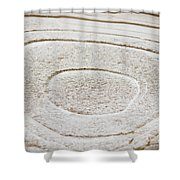 Icy Bulls Eye Shower Curtain
