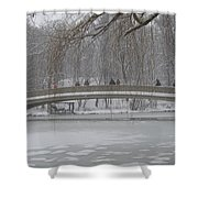 Icy Central Park Shower Curtain