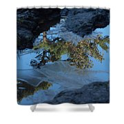 Icy Evergreen Reflection Shower Curtain