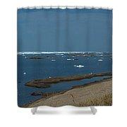 Icy Horizon Shower Curtain