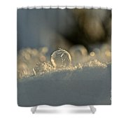 Icy Marbel Shower Curtain