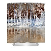 Icy Reflections Shower Curtain