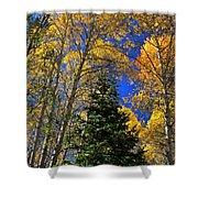 Idaho Autumn Colours Shower Curtain