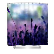 If I Had A Purple Crayon ... Shower Curtain