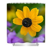 If You Knew Susie Shower Curtain