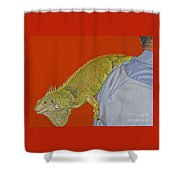 Iguana By The Tail Shower Curtain