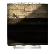 Il Piccolo Guardiano Shower Curtain