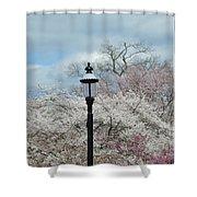 Illuminating Blossoms Shower Curtain