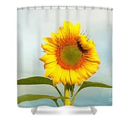 I'm Beautiful I Know It Shower Curtain