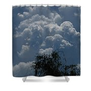 I'm Thinking Rain Shower Curtain