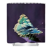 Imaginary Butterfly Shower Curtain