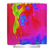 Imaginary Liberty The Dog Shower Curtain