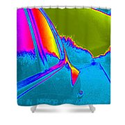 Imaginary Road Trip Shower Curtain