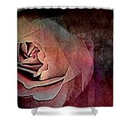 Imagination In Bloom Shower Curtain