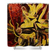 Imagination In Reds And Yellows Shower Curtain