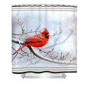 Img 2559-15 Shower Curtain