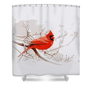 Img 2559-17 Shower Curtain