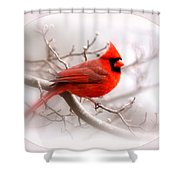 Img 2559-18 Shower Curtain