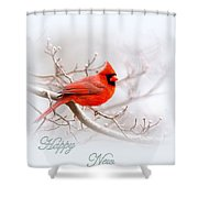 Img_2559 2 Shower Curtain